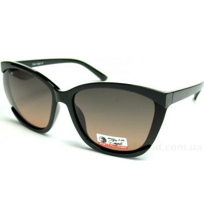 Солнцезащитные очки POLAR Eagle 05753 поляризационные
